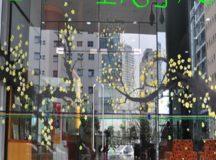 Cửa kính cường lực 10 ly quận tân phú, quận tân bình , quận phú nhuận , quận bình thạnh – Cửa kính cường lực tại Sài Gòn